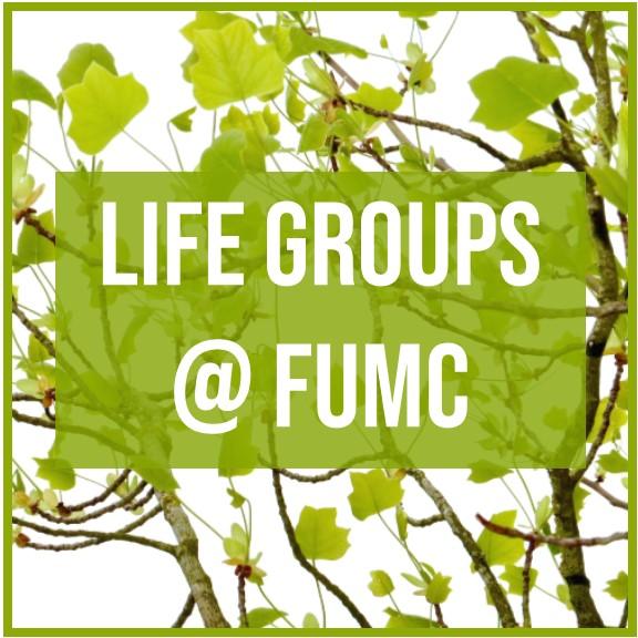 Life Groups @ FUMC